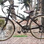 ภาพเพื่อโชว์(www.oldgood88.com)