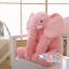 หมอนช้าง ตุ๊กตาช้าง เนื้อนุ่ม ขนไม่ร่วง >>ส่งฟรีลงทะเบียน thumbnail 7