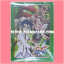 BF Sleeve Collection Mini Vol.05 : Zanya Kisaragi & Tsukikage, Blademaster Mode 55ct. thumbnail 1