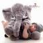 หมอนช้าง ตุ๊กตาช้าง เนื้อนุ่ม ขนไม่ร่วง >>ส่งฟรีลงทะเบียน thumbnail 3