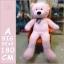 ตุ๊กตาหมีตัวใหญ่ขนาด 160 cm สีชมพู สีขาว สีน้ำตาลอ่อน สีน้ำตาลเข้ม thumbnail 2