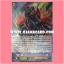 FC02/006TH : รีเวนเจอร์แห่งหอกยาว, เปรโดร (Halberd Revenger, Peredur) - แบบโฮโลแกรมฟอยล์ thumbnail 1