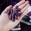 Healthessence Red Grape Seed 55,000mg สกัดจากเมล็ดองุ่นแดง 55,000 mg. thumbnail 4