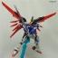 RG Destiny Gundam thumbnail 6