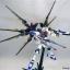 MG (003) 1/100 Strike Freedom Gundam thumbnail 9