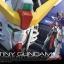 RG Destiny Gundam thumbnail 1