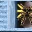 GX-9901-DX Gundam Double X (Gundam DX) (HGAW) thumbnail 6