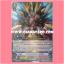 VG Half Deck : Monthly Bushiroad Deck 2 (VGT-MBD2) thumbnail 1
